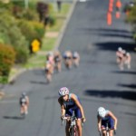 Cradle Coast Sports and Events